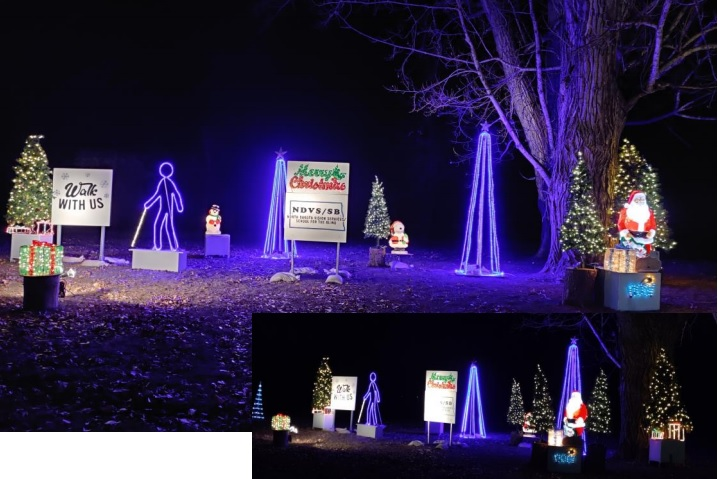 """Walk with Us Display a visually impaired person with a cane walking with a group of friends in a lite up tree park."""